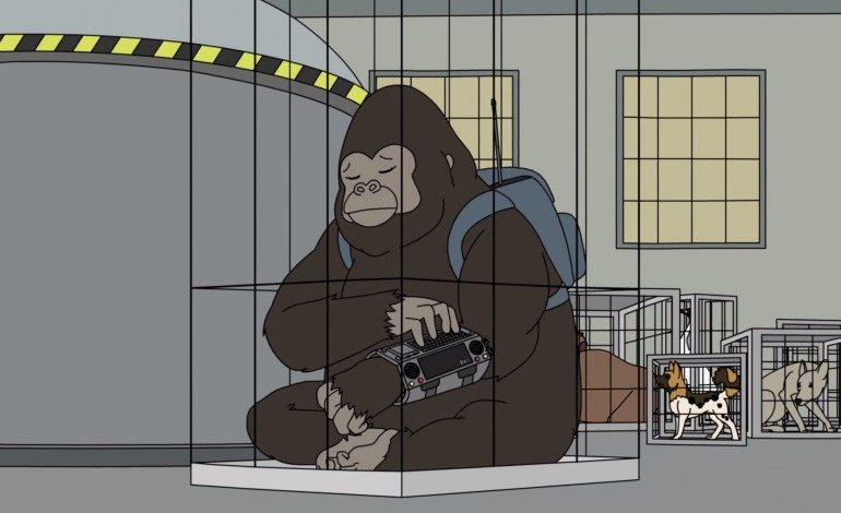 Cat Power Voices A Singing Gorilla For Adult Swim Show China IL