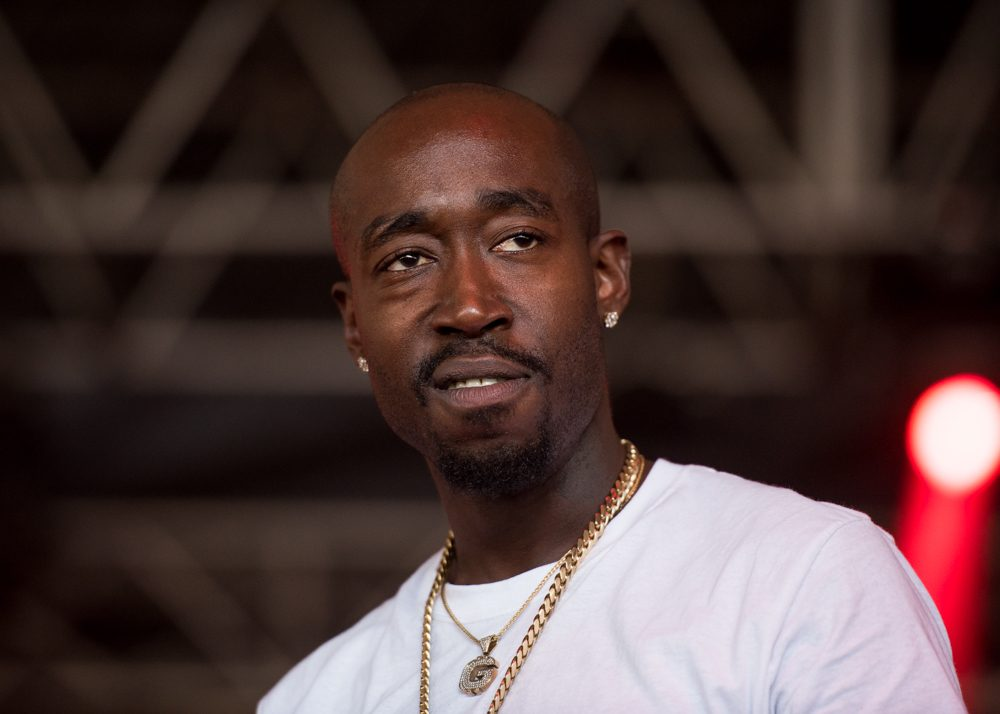 Freddie Gibbs and Madlib_Bonnaroo_SA-2015-4