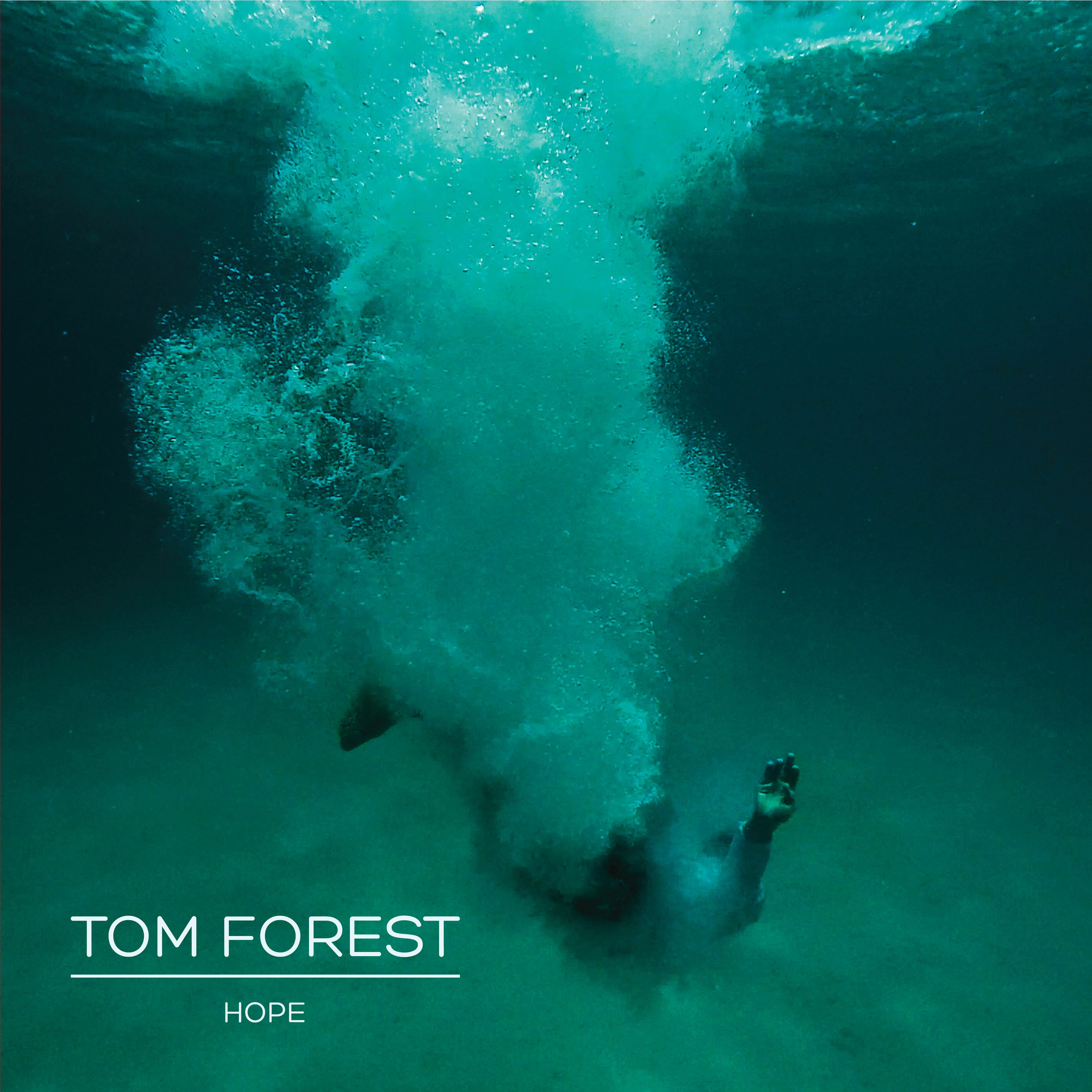 tom_forest_cover