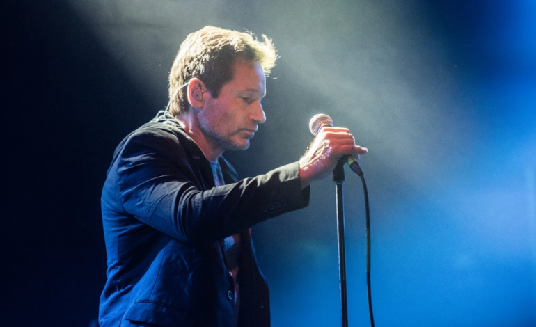 Interview: David Duchovny Talks Becoming A Musician, His Biggest Influences and Similarities Between Music and Acting