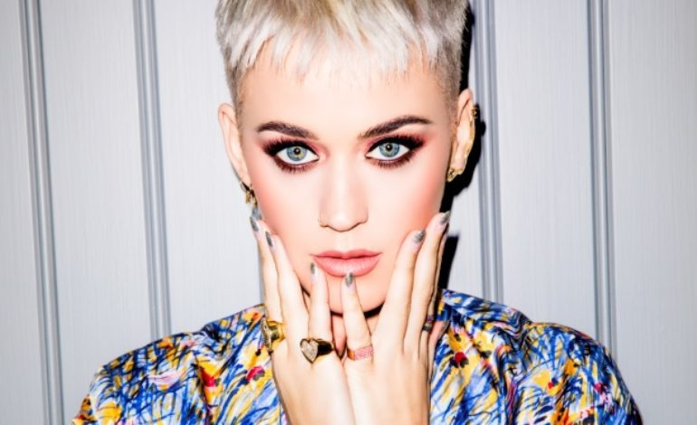 Second Person Accuses Katy Perry Of Sexual Harassment