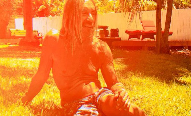 "Iggy Pop Shows Off His Subdued Side on Lounge-y ""James Bond"""