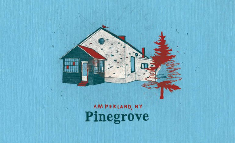 Album Review: Pinegrove – Amperland, NY